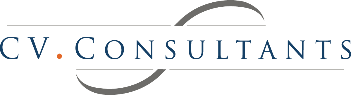 logo CV consultant